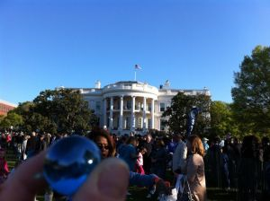 Latino American - Blue Marbles - 25